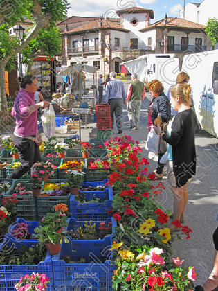 LG 1662 