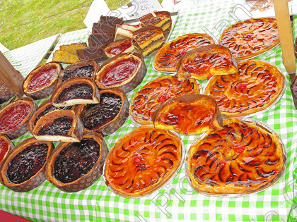 LG 1551 