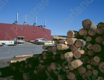 6020.01.01 