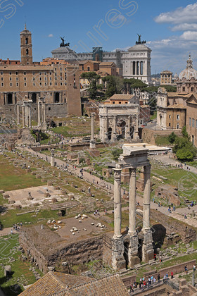 LGP 3695 