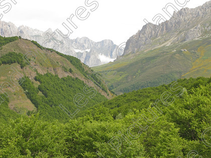 LG 1583 